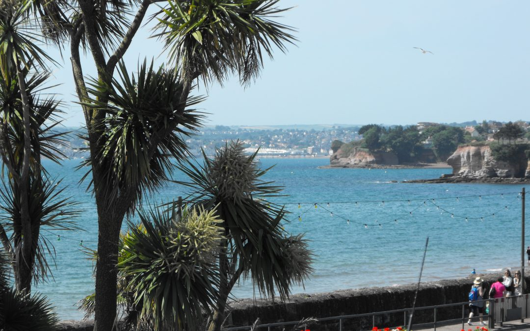 Torbay – Vicar of Christ Church, Paignton & St Paul, Preston