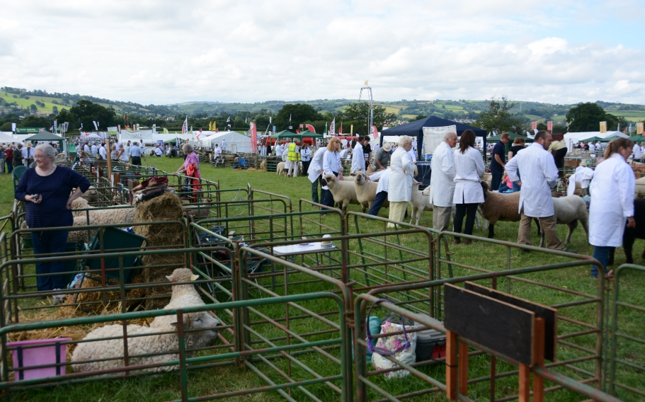 Mid Devon Show celebrates all that is good about rural life