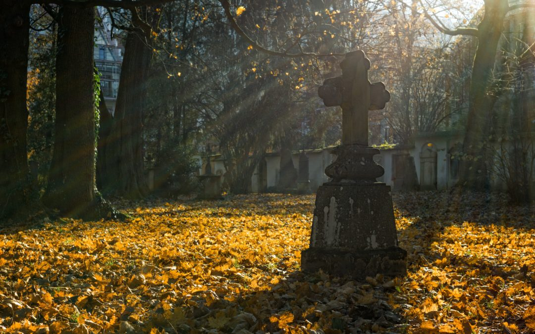 Beautiful Burial Ground Conferences  Postponed to Spring 2021 anyone booked on will receive an email in the next 48 hours. (posted 17/03/2020)