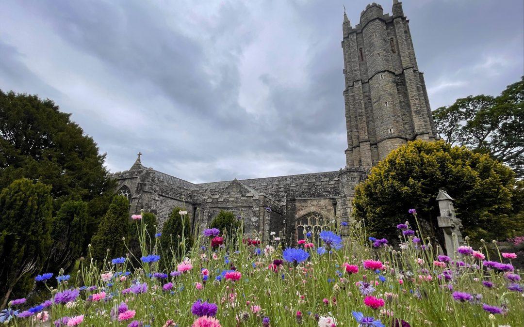 Celebrating Devon's Best Churchyards as Places of Spirituality, Wildlife and Wonder